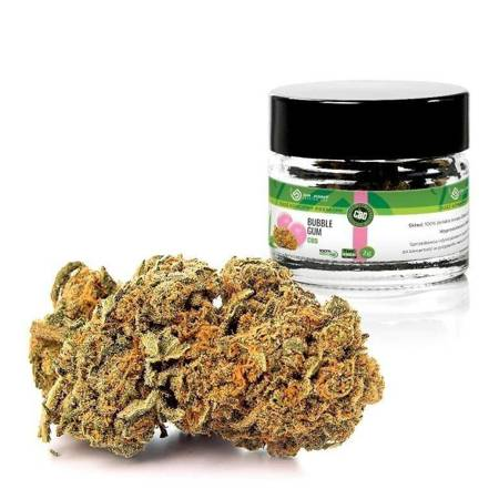 Dr.joint - PREMIUM dry CBD 5% - Bubble Gum